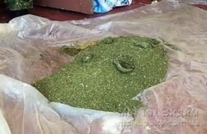 Волноваха наркотики 2 кг 13.07.17 1