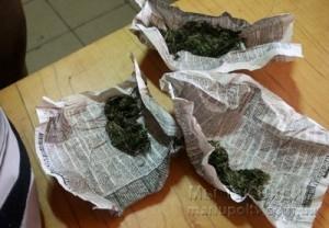 Мариуполь наркотики собака 09.08.17 3
