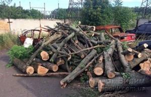 Волноваха вырубка леса 08.08.17 5