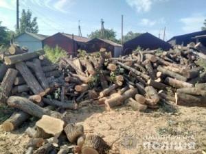 Мариуполь вырубка леса 21.08.18 3