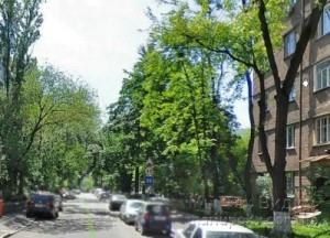 N11111ikolsko-Botanicheskaya-ulica
