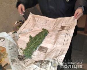 Мариуполь 3 килограмма наркотиков 11.02.19